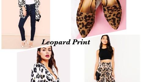 leopard-or-snake