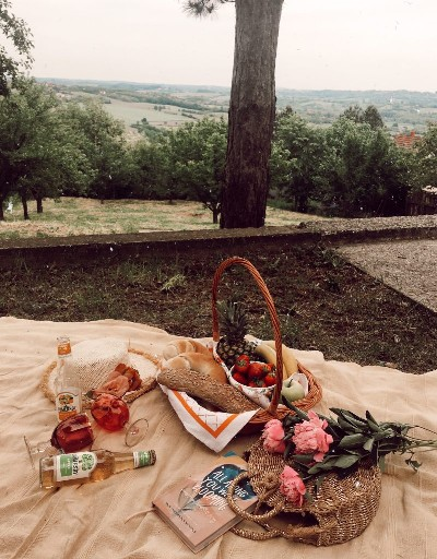 picnic on the grass / props and outfit