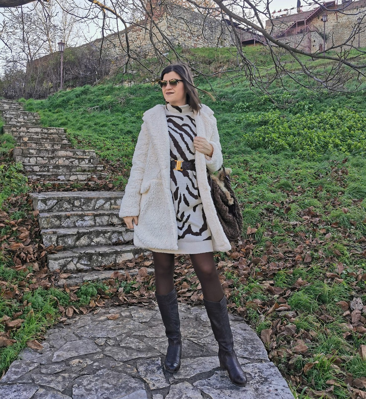 Teddy Coat & Zebra Dress Outfit Idea
