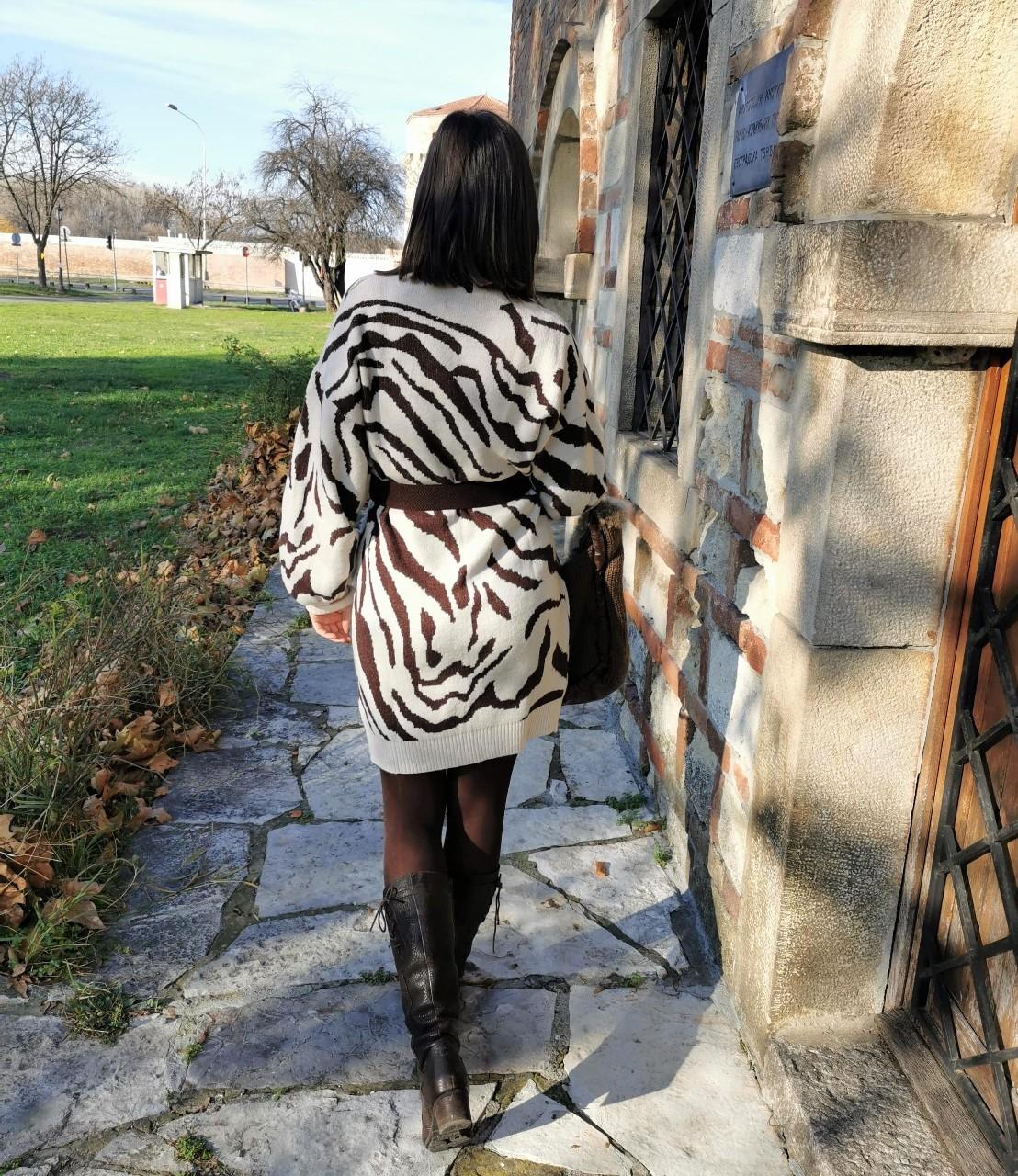 Zebra Dress Outfit Idea