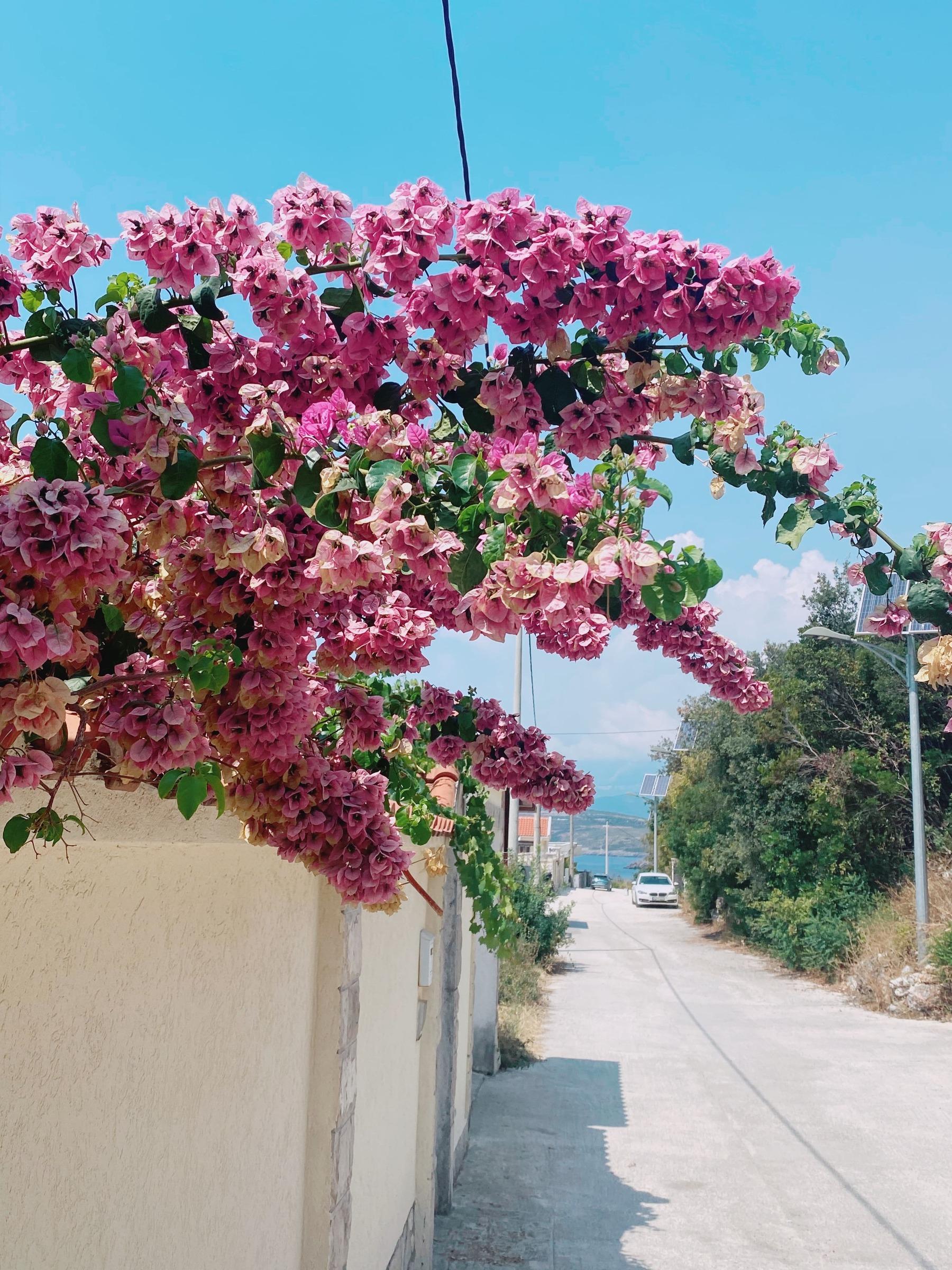bigovo, montenegro